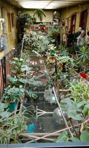 Budapest: tra tradizione, innovazione e farmer's market