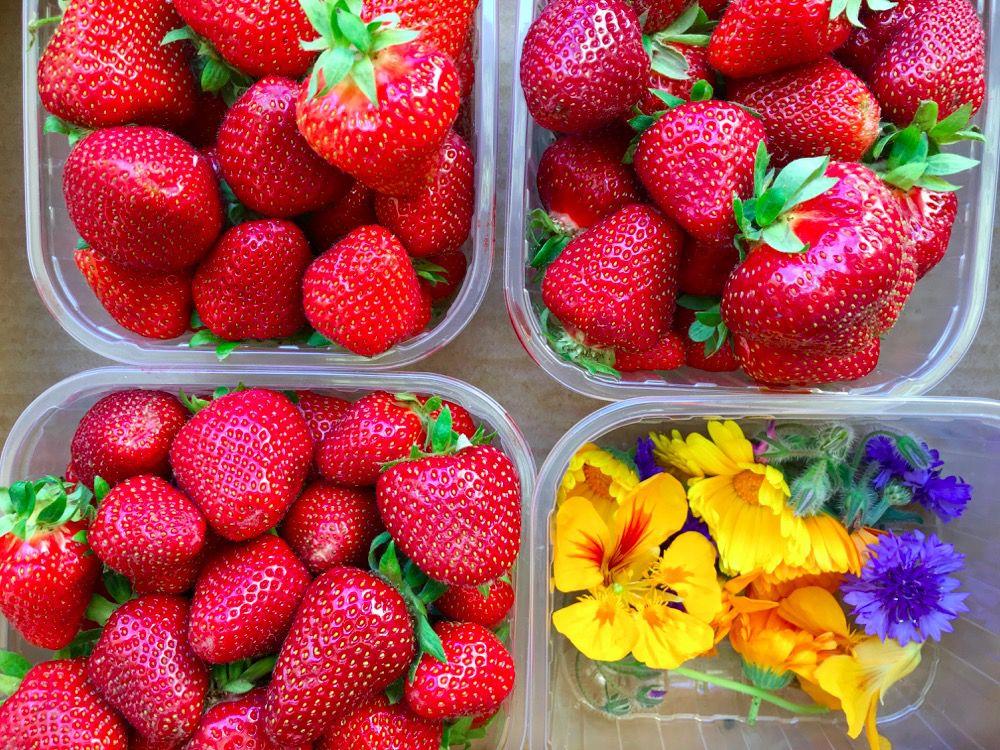 Confettura di fragole: ricetta di casa e ricordi in vaso