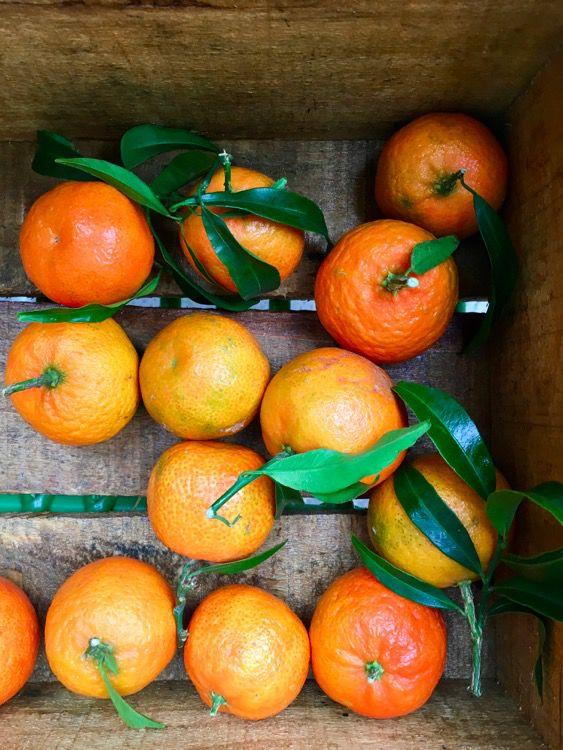 Breve guida per confetture e marmellate di stagione homemade