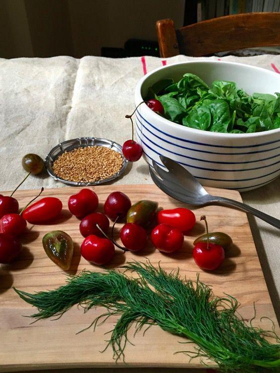 L'insalata era nell'orto: baby spinaci, ciliegie e balsamico