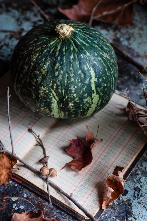 Ortolana Urbana - I brustolini, semi di zucca essiccati e salati
